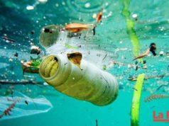 ¿Qué sucede con la basura que es lanzada al océano?
