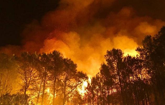 Incendio reserva natural Doñana