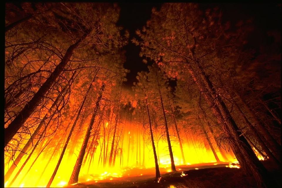 incendios Columbia Britanica