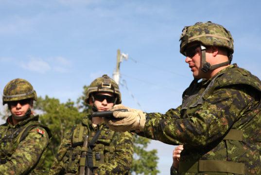 """Los veteranos canadienses tienen un riesgo """"significativamente"""" más alto de morir por suicidio"""