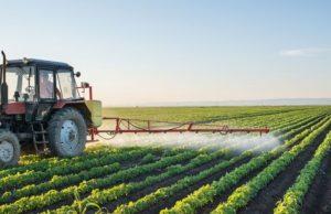 Agricultores que luchan contra la escasez de mano de obra buscan cambios en el programa de Trabajadores Extranjeros Temporales