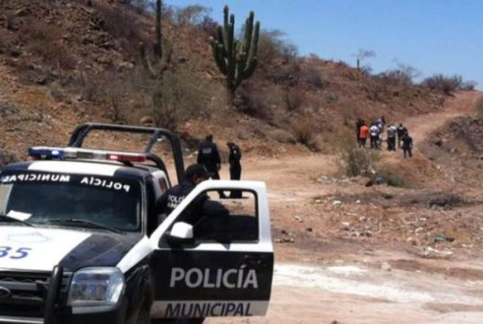 Policía mexicana encuentra 7 cabezas cercenadas en una hielera a la orilla del camino en Sonora