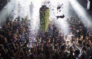 ¡Ya es legal! Entra en vigencia la Ley de Cannabis en todo Canadá