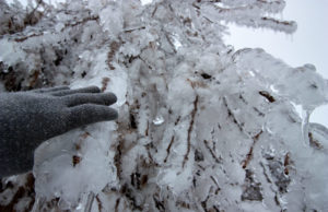 Edmonton espera lluvia helada esta tarde