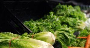 verduras en mercado lechuga